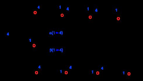 Almidón y celulosa